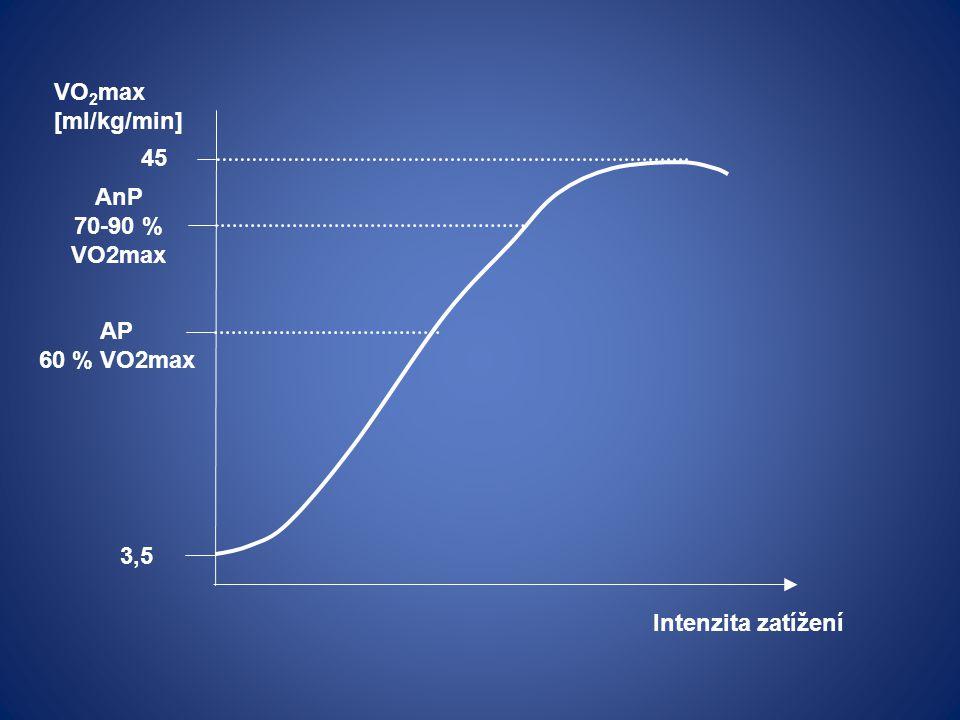 VO2max [ml/kg/min] 45 AnP 70-90 % VO2max AP 60 % VO2max 3,5 Intenzita zatížení